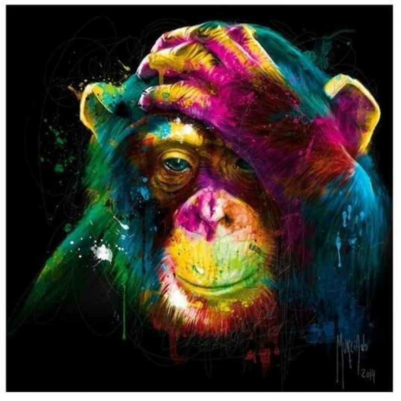 Colour Monkey | 5D D...